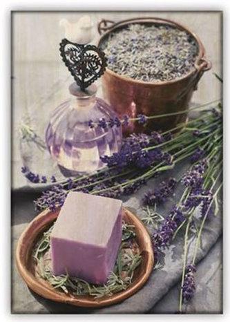 Helma365 - Obraz: Provence (340x485)