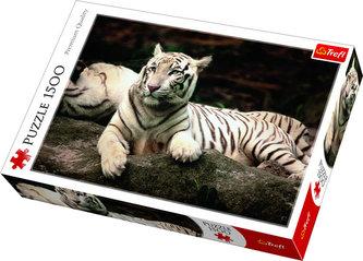 Bengálský tygr: Puzzle 1500 dílků - neuveden