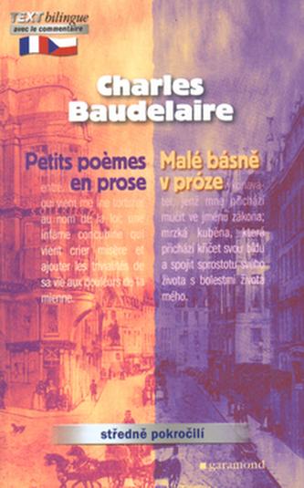 Malé básně v próze, Petits poemes en prose