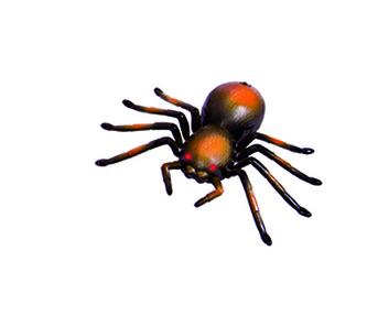 WILDROID - Tarantule R/C, krabice