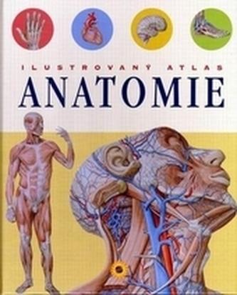 Ilustrovaný atlas Anatomie