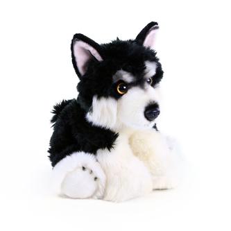 plyšový pes malamut sedící 28 cm