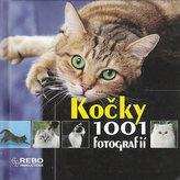 Kočky - 1001 fotografií