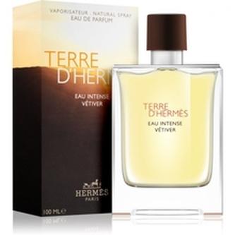 Hermes Terre D´Hermes Parfémovaná voda Eau Intense Vétiver 50 ml pro muže