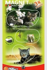 Magnetky Koťata 2 - MF 063