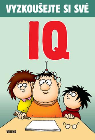 Vyzkoušejte si své IQ
