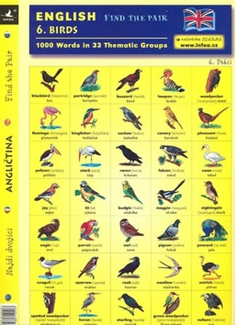 English - Find the Pair 1. Birds