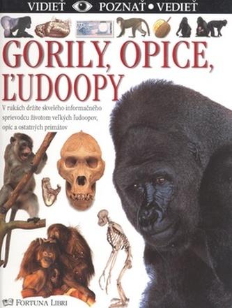 Gorily, opice, žudoopy
