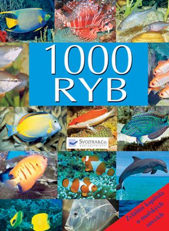 1000 ryb
