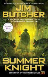 Dresden Files, Summer Knight. Die dunklen Fälle des Harry Dresden, Feenzorn, englische Ausgabe