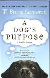A Dog's Purpose. Ich gehöre zu dir, englische Ausgabe
