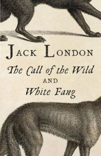 Call Of The Wild. White Fang. Ruf der Wildnis; Wolfsblut, englische Ausgabe - London, Jack