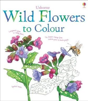 Usborne Wild Flowers to Colour