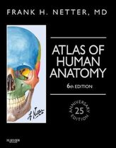 Atlas of Human Anatomy, Professional Edition