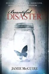 Beautiful Disaster, English edition