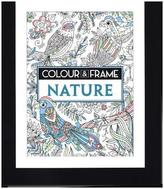 Colour and Frame Nature