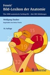 Feneis' Bild-Lexikon der Anatomie