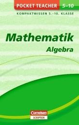Mathematik - Algebra: Kompaktwissen Klasse 5-10