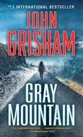 Gray Mountain. Anklage, englische Ausgabe