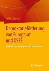 Demokratieförderung von Europarat und OSZE