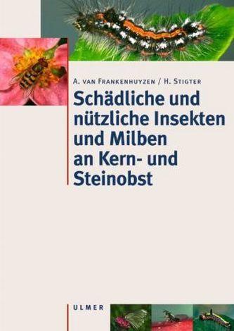 Steinobst