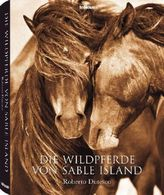 Die Wildpferde von Sable Island
