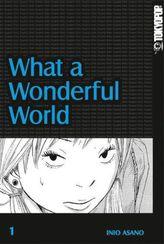 What a Wonderful World. Bd.1