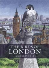 Birds of London