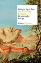 Unterrichtseinstiege Geschichte: Antike und Mittelalter, m. CD-ROM