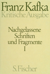 Nachgelassene Schriften und Fragmente, Kritische Ausgabe, 2 Bde.. Tl.1