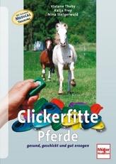 Clickerfitte Pferde