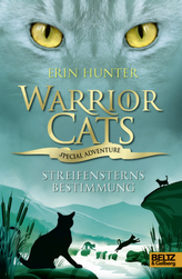 Warrior Cats, Special Adventure, Streifensterns Bestimmung
