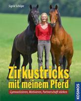 Zirkustricks mit meinem Pferd