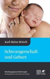 Sprachkurs, DVD-ROM m. Audio-CD u. Textbuch. Tl.3