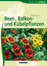Beet-, Balkon- und Kübelpflanzen