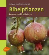 Bibelpflanzen kennen und kultivieren
