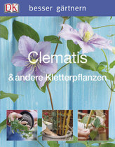 Clematis & andere Kletterpflanzen