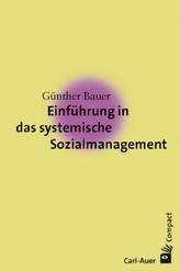 Einführung in das systemische Sozialmanagement