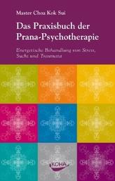 Das Praxisbuch der Prana-Psychotherapie