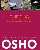 Buddha, sein Leben - sein Wirken - seine Lehre