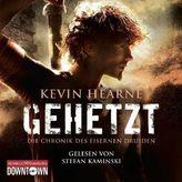 Die Chronik des Eisernen Druiden - Gehetzt, 1 MP3-CD