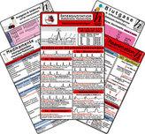 Intensiv-Station Karten-Set - Reanimation, Analgesie & Sedierung auf der Intensivstation, Herzrhythmusstörungen, Inkompatibilitä