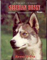 Siberian Husky heute