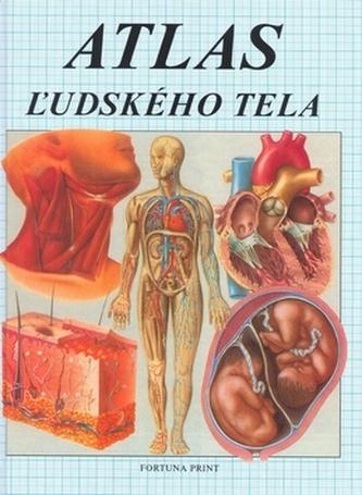 Atlas žudského tela