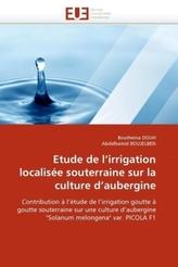 Etude de l'irrigation localisée souterraine sur la culture d'aubergine