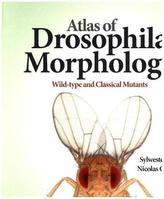 Atlas of Drosophila Morphology