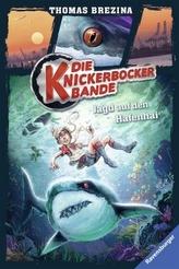 Die Knickerbocker-Bande - Jagd auf den Hafenhai