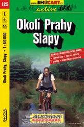 Okolí Prahy Slapy 1:60 000