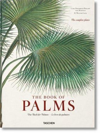 Book of Palms / Das Buch der Palmen / Le Livre des palmiers