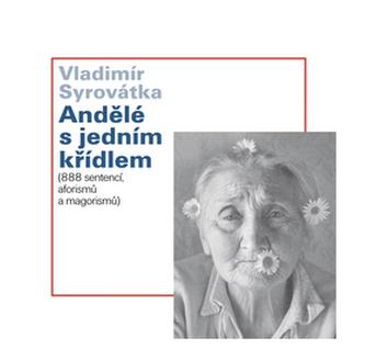 Andělé s jedním křídlem - Vladimír Syrovátka